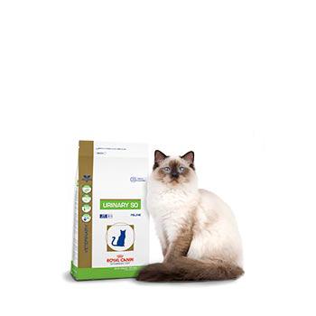 Royal Canin macskatáp, állatorvosi macskatáp, állatorvosi Royal Canin