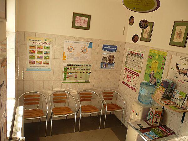 Bogáncs Állatorvosi rendelő váróterme